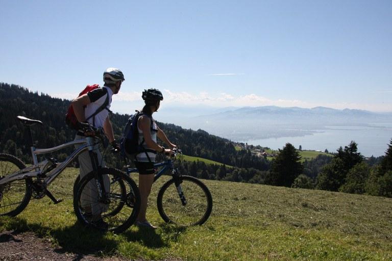 Bike Pfaender 2012 01
